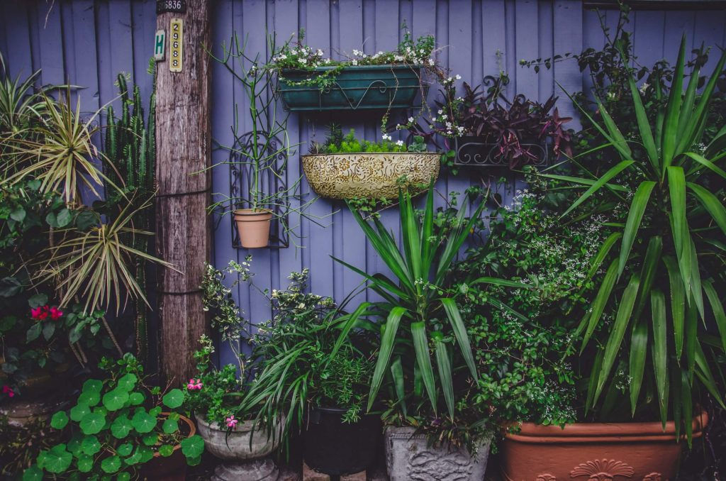 embellir un abri de jardin métal