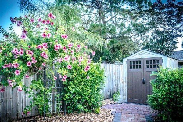 Comment trancher pour quel abri de jardin : Métal, bois ou PVC / résine ?