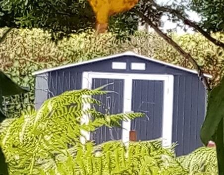 Un abri de jardin métal dans les végétaux